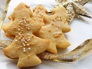 cookie-1786966_1920